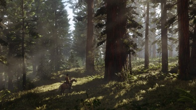 rdr2_forest_horse